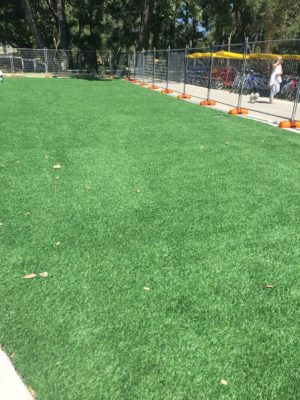 Fernley Grounds with synthetic turf